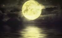 Welcome to Mynas' Moon!